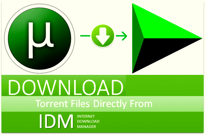 How To Download Torrent File Using IDM For Free